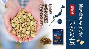喜界島産のそら豆